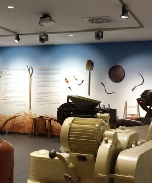 Museo Puratos