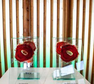 DKV Awards